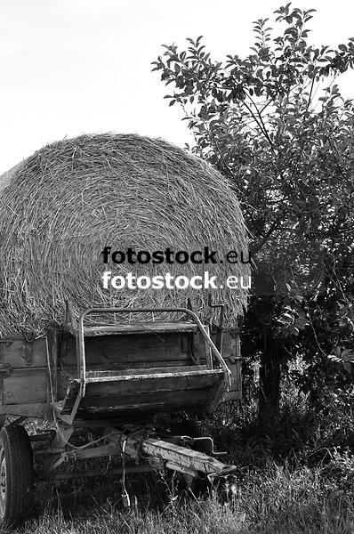 runder Strohballen auf altem landwirtschaftlichen Anhänger in Feld