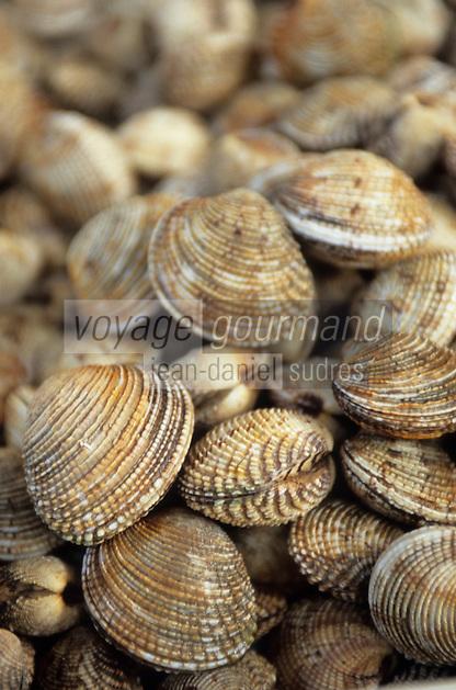 Europe/Croatie/Dalmatie/Split: Sur le marché détail d'un étal de coquillages- Praires