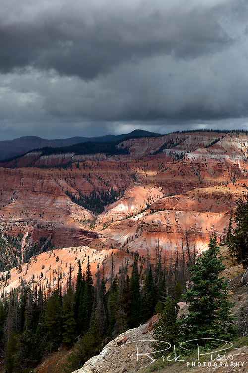 A thunderstorm forms over the ampitheater at Cedar Breaks National Monument
