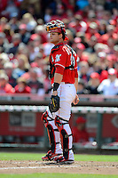 Cincinnati Reds catcher Devin Mesoraco #39 during a game against the Miami Marlins at Great American Ball Park on April 20, 2013 in Cincinnati, Ohio.  Cincinnati defeated Miami 3-2 in 13 innings.  (Mike Janes/Four Seam Images)