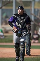 Colorado Rockies catcher Austin Bernard (60) during a Minor League Spring Training game against the Milwaukee Brewers at Salt River Fields at Talking Stick on March 17, 2018 in Scottsdale, Arizona. (Zachary Lucy/Four Seam Images)