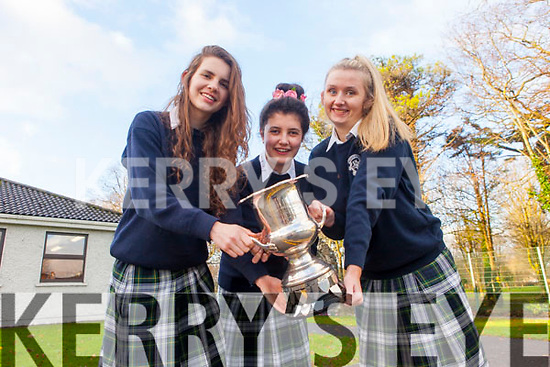 5th Year students at Presentation Secondary School, Tralee Mairead Dowling, Kelley Pierse and Aisling Clarke competed in the Soroptimist's Public speaking competition on Saturday 15th November in the Meadowlands Hotel, Tralee. All 3 students were successful, with Mairead and Kelley securing joint 1st place and Aishling being awarded 3rd place.
