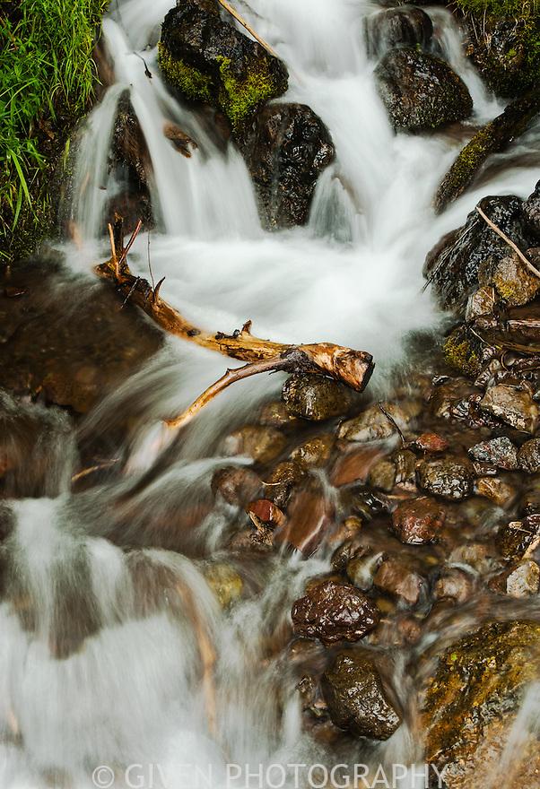 Creek, Olympic National Park, Washington