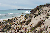 Dunes and coastal flora drop suddenly down to the turquoise waters on the coast of Kangaroo Island, South Australia.