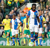 Blackburn Rovers' Marvin Emnes shows his dejection after Norwich City go 1-0 ahead<br /> <br /> Photographer David Shipman/CameraSport<br /> <br /> The EFL Sky Bet Championship - Norwich City v Blackburn Rovers - Saturday 11th March 2017 - Carrow Road - Norwich<br /> <br /> World Copyright &copy; 2017 CameraSport. All rights reserved. 43 Linden Ave. Countesthorpe. Leicester. England. LE8 5PG - Tel: +44 (0) 116 277 4147 - admin@camerasport.com - www.camerasport.com