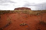 Parc national d'Uluru- Kata Tjuta.Célèbre rocher d'Ayers Rock ou Uluru en langage aborigène. mesure 3,6 km de long et s'élève à 348 m au dessus du plateau..