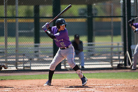 Colorado Rockies catcher Franklin Garcia (2) at bat during an Extended Spring Training game against the Chicago Cubs at Sloan Park on April 17, 2018 in Mesa, Arizona. (Zachary Lucy/Four Seam Images)