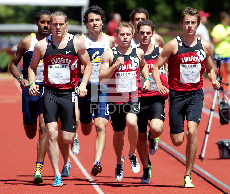Stanford, CA., April 20, 2013,--Stanford's Tyler Stutzman runs in the 119 Big Meet at Cobb Track and Angell Field at Stanford University.