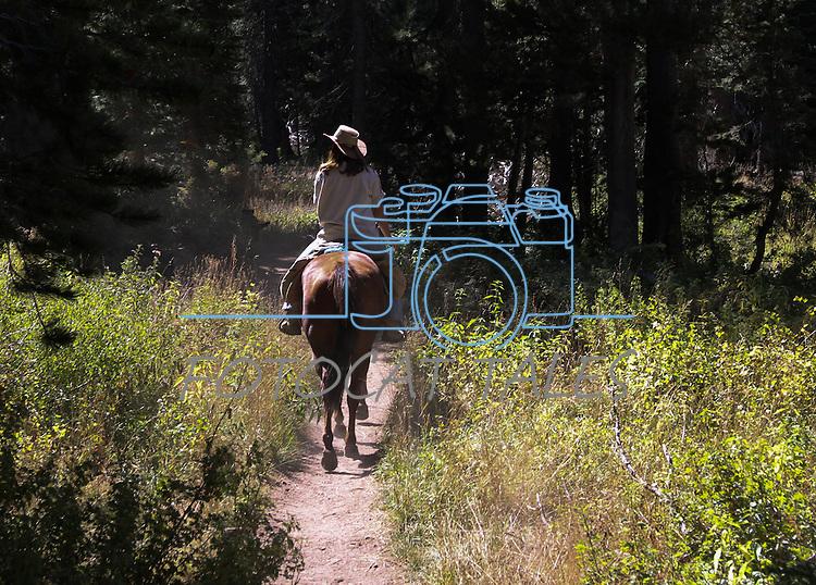 Horseback riders enjoy the Big Meadow trail into Dardanelles Lake in El Dorado County, Ca., on Wednesday, Sept. 15, 2010..Photo by Cathleen Allison