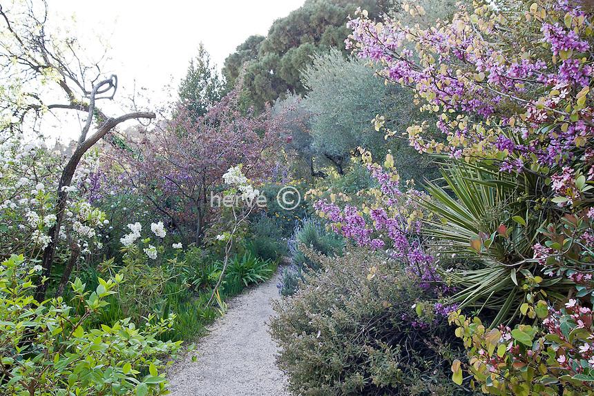 Hyères : jardins de la villa Noailles // France, Hyères : Gardens of the villa Noailles.