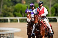 I'll Have Another, with jockey Mario Gutierrez  aboard wins the 2012 Santa Anita Derby at Santa Anita Park in Arcadia California on April 7, 2012.