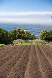 USA, California, Big Sur, Esalen, rows of freshly tilled dirt at The Farm, the Esalen Institute with the Pacific Ocean in the distance