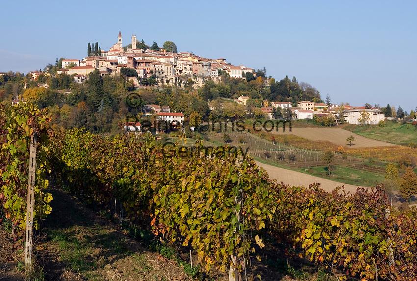 Italien, Piemont, Region Monferrato, Weinberge und Weinort Rosignano Monferrato | Italy, Piedmont, Rosignano Monferrato: vineyards