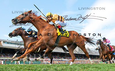 Wise Dan, trained by Charlie LoPresti.  Two-time Horse of the Year.