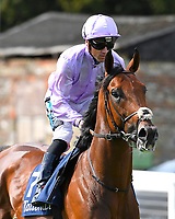 King Ottokar ridden by Stevie Donohoe goes down to the start of The Tattersalls Sovereign Stakes during Horse Racing at Salisbury Racecourse on 15th August 2019