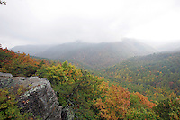 Foggy overlook on the Blue Ridge Parkway.