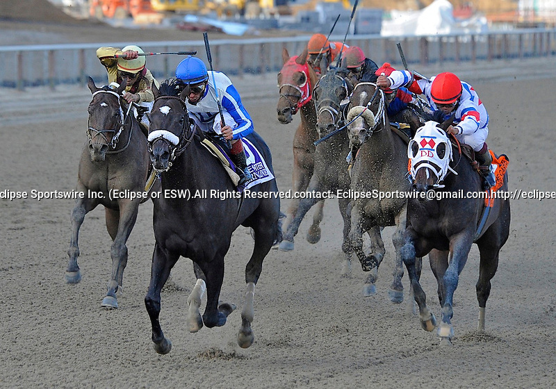 Morning Line (no. 10), ridden by John Velazquez and trained by Nicholas Zito, wins the 111th running of the grade 1 Carter Handicap for three year olds and upward on April 9, 2011 at Aqueduct Race Track in Ozone Park, New York.  (Bob Mayberger/Eclipse Sportswire)