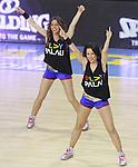 2013 -2014 Cheerleaders