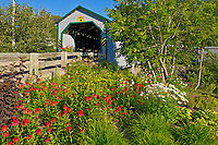Pont couvert du Faubourg (covered bridge) <br />