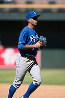 Kansas City Royals left fielder Marten Gasparini (12) jogs off the field between innings of an Instructional League game against the Arizona Diamondbacks at Chase Field on October 14, 2017 in Scottsdale, Arizona. (Zachary Lucy/Four Seam Images)