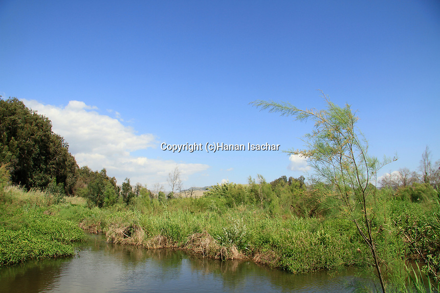 Israel, Sea of Galilee, Zaki stream in Bethsaida valley