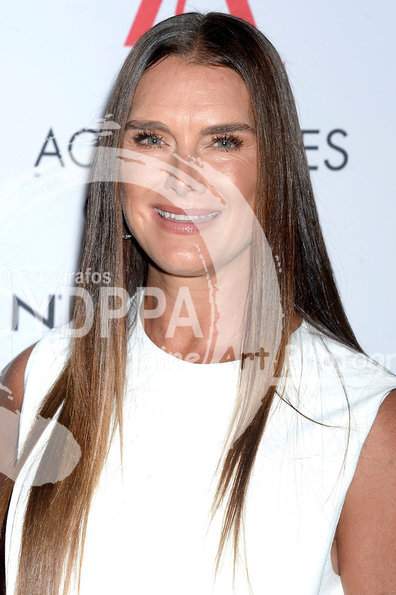 Brooke Shields bei der Verleihung der 21. Ace Awards 2017 im Cipriani 42nd Street. New York, 07.08.2017