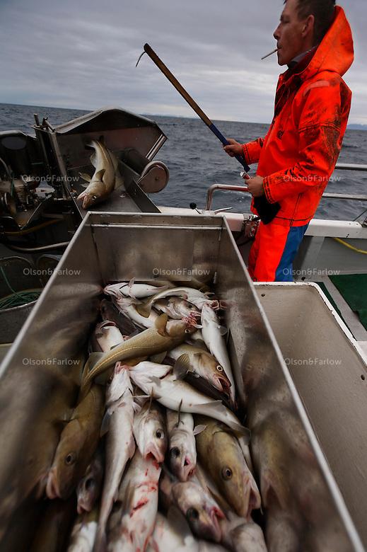 Long line fisherman in Olafsvik is Magnus Gunnlaugsson..Email: dugga@simnet.is.Phone: +354 436 11 31 or 899 0431