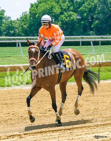 Pie Baby Pie winning at Delaware Park on 6/25/16