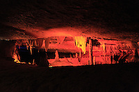 Forbidden Caverns, near Sevierville, Tennessee