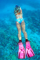 snorkeler over coral reef.Kiholo Bay, Big Island, Hawaii (Pacific).snorkeler over coral reef.Kiholo Bay, Big Island, Hawaii (Pacific).