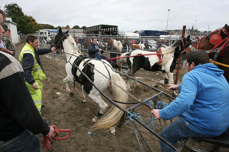 4/10/2010.  Sulky riders in the trotting lane at the Ballinasloe Horse Fair, Ballinasloe, Ireland. Picture James Horan
