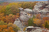 Shawnee National Forest, IL<br /> &quot;Camel Rock&quot; a sandstone formation above the autumn forest canopy- Observation Trail, Garden of the Gods Recreation Area