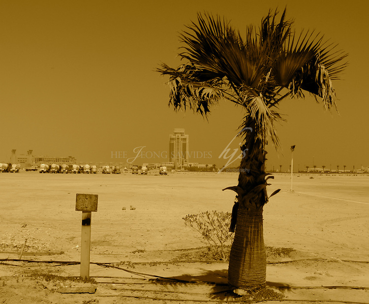 A palm Tree and a metal plate standing side by side-symbolic in many ways: Nature & man-made, wealth & poor, expats & workers... West Bay, Doha, Qatar   Mar 10