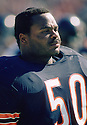Chicago Bears Mike Singletary (99) during a game from his 1984 season with the Chicago Bears. Dan Hampton played for 12 years, all with the Chicago Bears, was a 4-time Pro Bowler and was inducted to the Pro Football Hall of Fame in 2002.Chicago Bears Mike Singletary (99) sideline portrait from his 1986 season with the Chicago Bears. Mike Singletary played for 12 season, all with the Chicago Bears, was a 10-time Pro Bowler and was inducted to the Pro Football Hall of Fame in 1998.(SportPics)