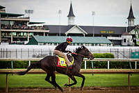 LOUISVILLE, KY - MAY 03: McCraken, owned by Whitham Thoroughbreds LLC and trained by  Ian R. Wilkes, exercises in preparation for the Kentucky Derby in preparation for the Kentucky Derby at Churchill Downs on May 03, 2017 in Louisville, Kentucky. (Photo by Alex Evers/Eclipse Sportswire/Getty Images)