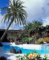 Spanien, Kanarische Inseln, Lanzarote, Jameos del Agua: Kunst- und Kulturzentrum in der Gemeinde Haria, kuenstlicher Pool entworfen von Cesar Manrique | Spain, Canary Island, Lanzarote, Jameos del Agua: pool by Cesar Manrique