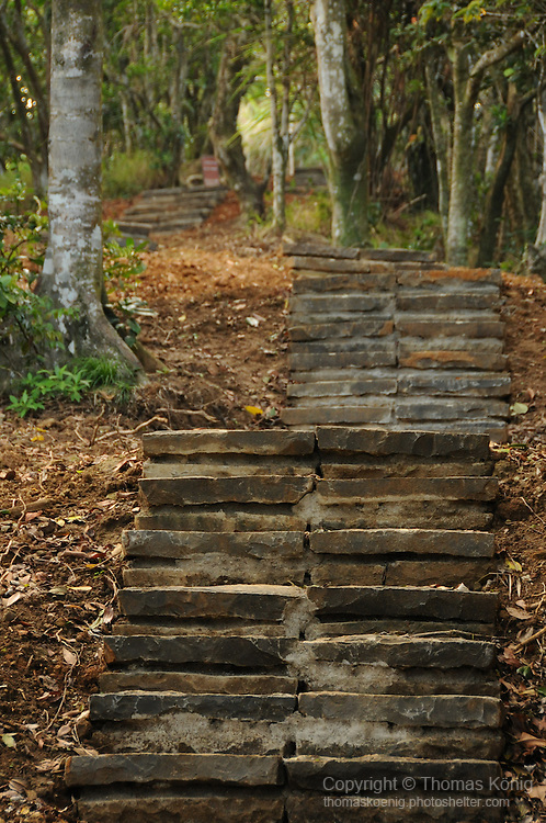 Green Island -- Steps on the ancient (but rebuilt) cross-island trail.