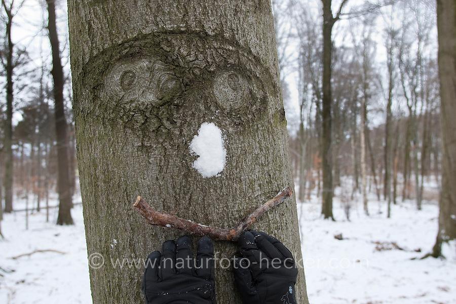 Baumgesicht, Rinde mit Gesichtsform, Auge, Augen, bekommt eine Nase aus Schnee und ein Stöckchen als Mund, Waldwichtel, Wichtel, Naturkunst im Winter