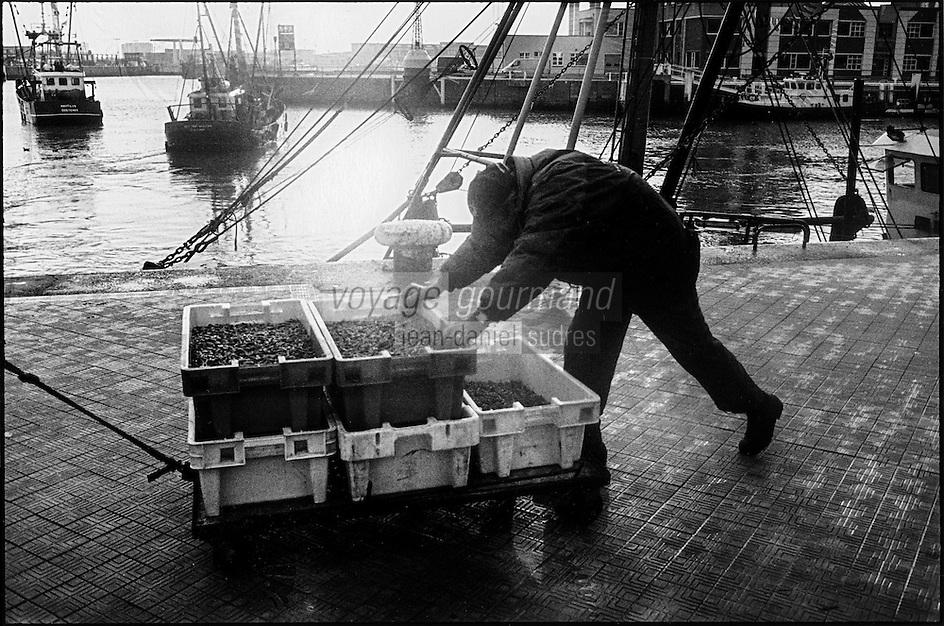Europe, Belgique, Flandre, Flandre Occidentale, Ostende: Sur le port pêcheur poussant un chariot de caisses de moules // Europe, Belgium, West Flanders, Ostende: Fisherman on the harbor pushing a cart of boxes of mussels
