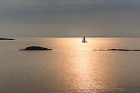 Segelbåt på lugn fjärd badande i solreflexer i Stockholms ytterskärgård