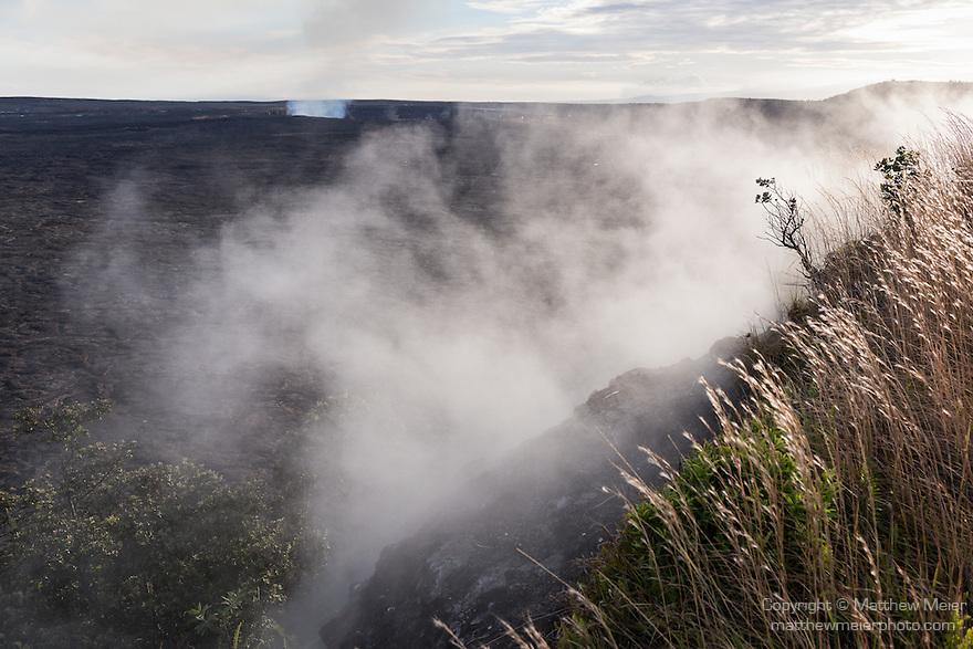 Hawai'i Volcanoes National Park, Big Island of Hawaii, Hawaii; Kīlauea volcano, Halemaʻumaʻu crater, steam vents around the rim of the crater