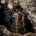A water spirit gazes out from behind a small waterfall.