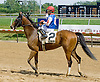 Yesterday's Story winning at Delaware Park on 6/13/12