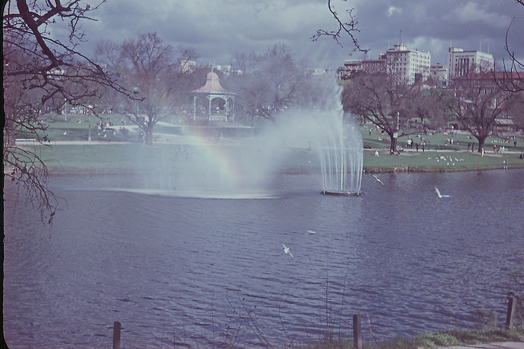 Fountain , River Torrens 1957 looking back to Adelaide City past Rotunda.