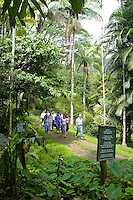 Lyon Gardens offers visitors guided tours through its lush tropical gardens and rainforest. Located in Manoa Valley on Oahu,Hawaii.
