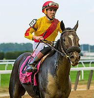 OCTOBER 7, 2018 : Sue's Fortune in the Frizette Stakes at Belmont Park on October 6, 2018 in Elmont, NY.  Sue Kawczynski/ESW/CSM
