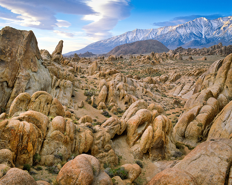 "Alabama Hills Recreation Area (protected habitat), managed by the BLM, a ""range of hills"" and rock formations near the eastern slope of the Sierra Nevada Mountains in the Owens Valley. Orange, drab weathered metamorphosed volcanic rock that is 150-200 million years old and 90 million year old granite that weathers to potato-shaped large boulders, many of which stand on end due to spheroidal weathering acting on many vertical joints in the rock. Named by Confederate sympathizers after CSS Alabama sunk off coast of Normandy by USS Kearsarge in 1864. Popular location for hundreds of westerns and other films. Inyo County, CA."