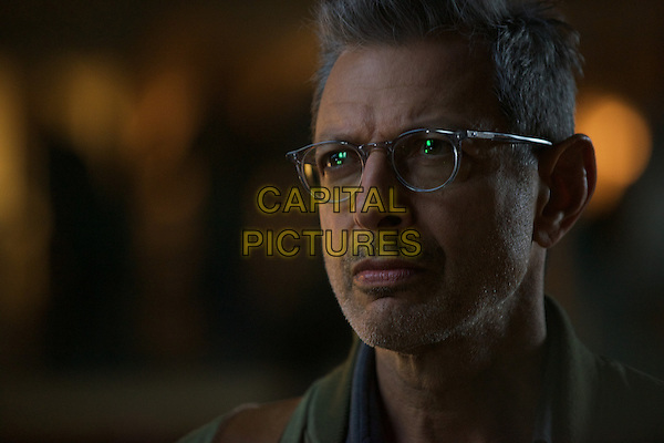 Independence Day: Resurgence (2016) <br /> Jeff Goldblum<br /> *Filmstill - Editorial Use Only*<br /> CAP/KFS<br /> Image supplied by Capital Pictures