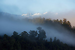 Mount Tasman and the Southern Alps through fog. Westland Region. New Zealand.
