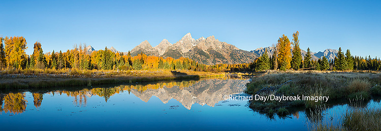 67545-08910 Sunrise and fall color at Schwabacher Bend Landing, Grand Teton National Park, WY